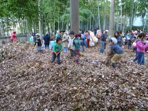 園舎裏の「竹の子村」と呼ばれる竹林